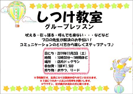 しつけ教室1102.JPG