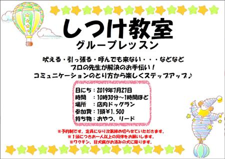 しつけ教室201907.JPG