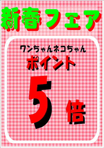 てら2-1.jpg