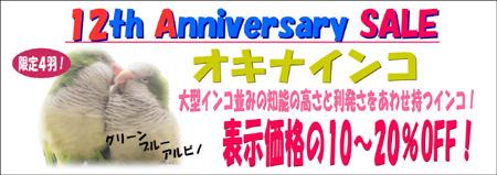 オキナインコpop.JPG
