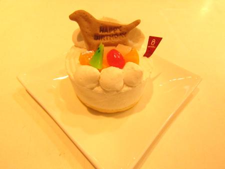 犬 ケーキ 2.jpg