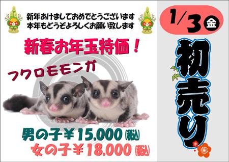 2020初売りフクモモ.JPG