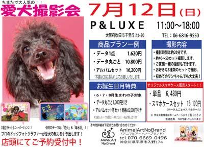 7月12日P&LUXE チラシ.jpg