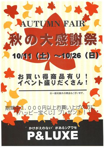 Autumn-Fair-2.jpg