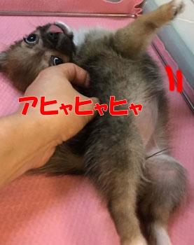 IMG_7717.jpg