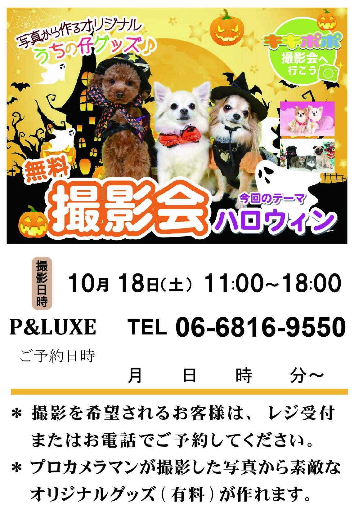 P&LUXE_チラシ.jpg