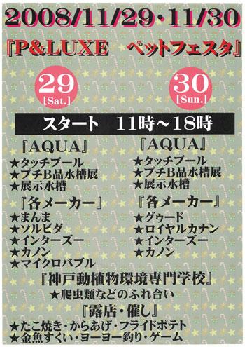 Pet-Festa-20082.jpg