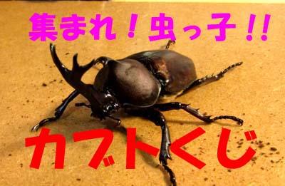 hyouosi180727rep1.jpg