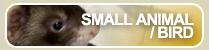 ペットショップ取り扱い小動物(スモールアニマル)・鳥(バード)の情報はこちら