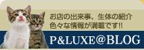 ペットショップの情報がいっぱい P&LUXE BLOG